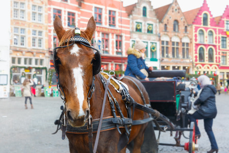 horse drawn carriage: Bruges, Belgium - December 26, 2014: Horse carriage and tourists on Grote Markt square of Brugge Christmas. Belgian city of Bruges is UNESCO world heritage listed for its medieval center.