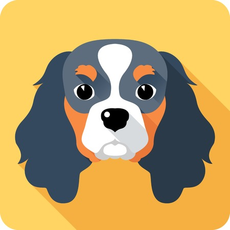 cavalier king charles spaniel: dog icon flat design