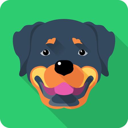 rott: perro Rottweiler icono de dise�o plano Vectores