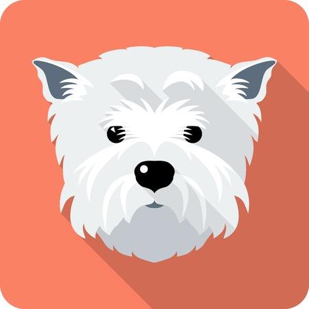 cute westie: dog West Highland White Terrier icon flat design