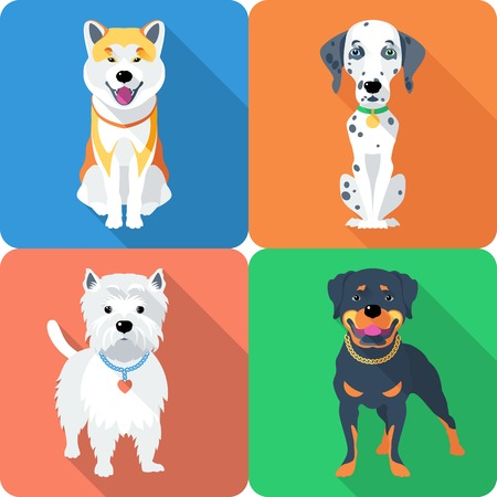 doggie: dog Akita Inu,  Dalmatian, Rottweiler and West Highland White Terrier icon flat design