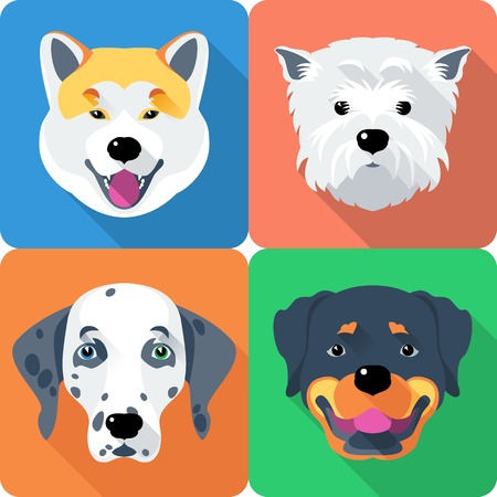 dog Akita Inu,  Dalmatian, Rottweiler and West Highland White Terrier icon flat design Vector