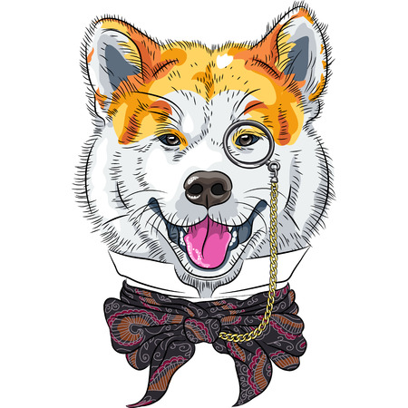 spitz: vector funny cartoon hipster dog Akita Inu