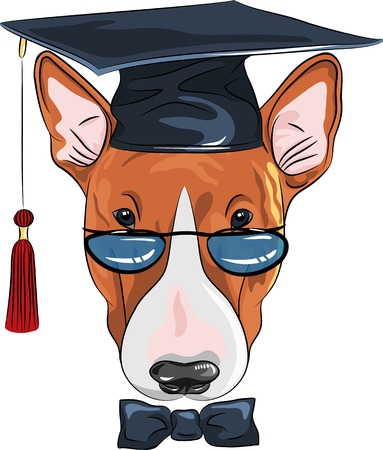 vector funny graduated dog Bullterrier