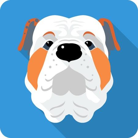 english bulldog: dog English Bulldog icon flat design