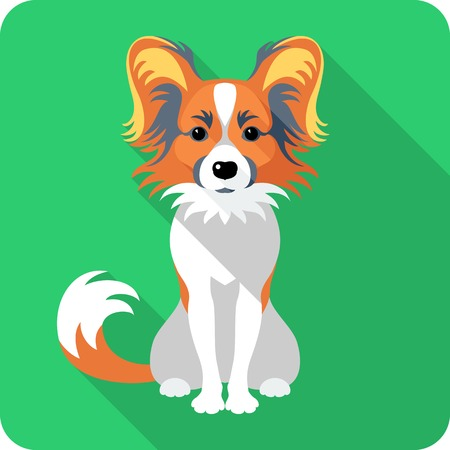 spaniel: dog Chinese Crested icon flat design