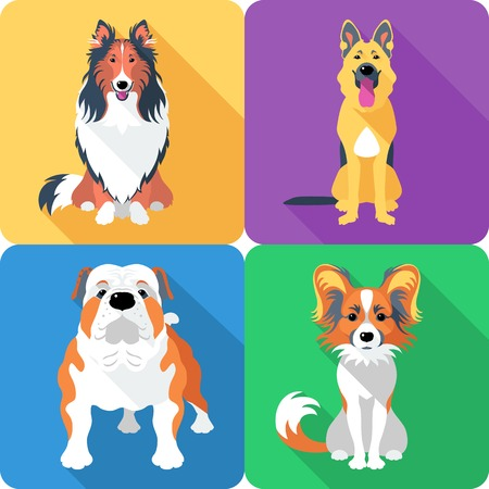 shadow silhouette: Vector dog Rough collie, Papillon, German shepherd and English Bulldog breed face icon flat design