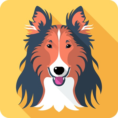 collie: Vector smiling dog Rough collie red and black icon flat design Illustration