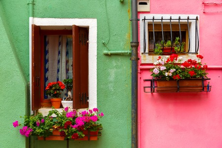venetian blind: Picturesque windows with shutters and flowers on pink and green wall of houses on the famous island Burano, Venice, Italy Stock Photo