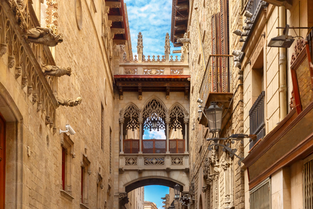 old quarter: Bridge Carrer del Bisbe in Barcelona Gothic quarter, Catalonia, Spain