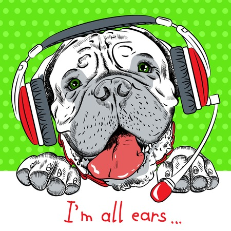 Poster with hipster dog Bullmastiff breed as customer service, call center operator with phone headset