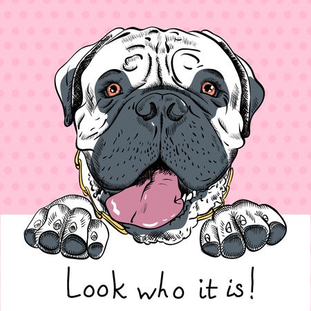 ポスターとり入れるヒップスター犬マスティフ種と歓迎の碑文