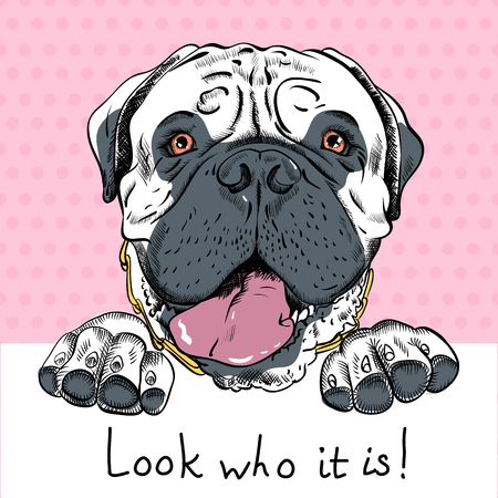 Poster witb hipster dog Bullmastiff breed and an inscription welcome