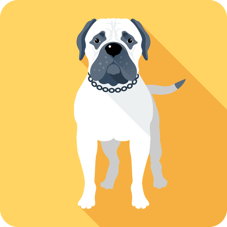 bullmastiff: Vector serious dog Bullmastiff standing icon flat design Illustration