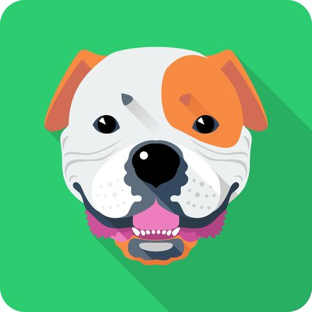 wrinkled face: Vector smiling dog American Bulldog icon flat design Illustration