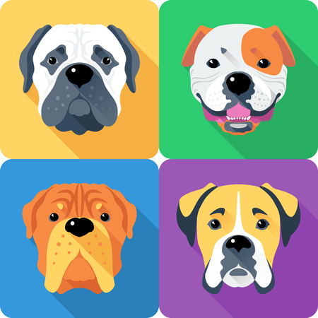 Vector dog Bullmastiff, French Mastiff, Boxer and American Bulldog breed face icon flat design Illustration