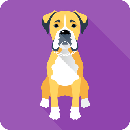 brindled: Vector serious dog Boxer sitting icon flat design Illustration