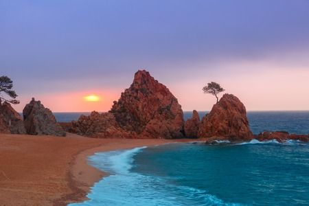 uprise: Sunrise over the sea and the beach, in the foreground rocks and trees at Gran Platja beach.