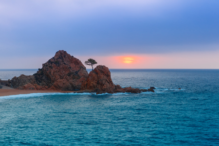 reveille: Sunrise over the sea and the beach, in the foreground rocks and trees at Gran Platja beach.