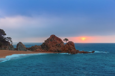 reveille: Sunrise over the sea and the beach, in the foreground rocks and trees at Gran Platja beach