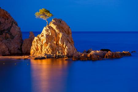 Night sea, in the foreground rocks and trees at Gran Platja beach and Badia de Tossa bay in Tossa de Mar on Costa Brava, Catalunya, Spain
