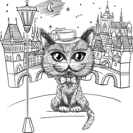 bowtie: funny British cat hipster in hat and bowtie on the Prague cityscape with Prague Castle and Charles Bridge