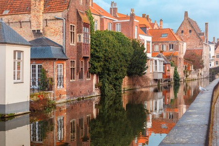 parapet: Scenic city view of Bruges canal with beautiful medieval houses and their reflection, seagull on parapet, Belgium