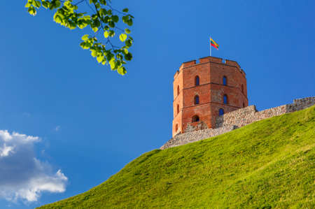 europe eastern: Tower of Gediminas in the summer morning In Vilnius, Lithuania.