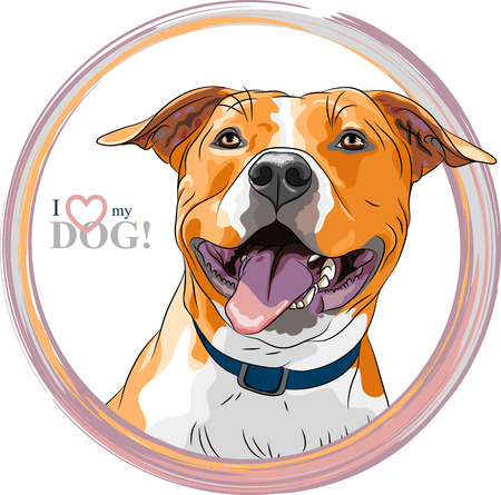 closeup portrait of the smiling dog American Staffordshire Terrier breed Illustration