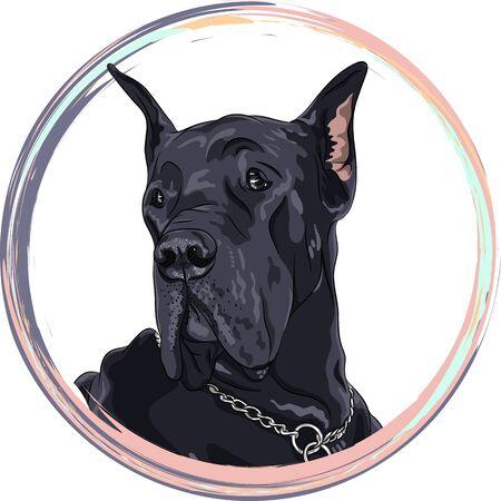 肖像画の黒犬。ラウンド フレームのグレートデーン犬T シャツのグラフィック。犬のプリント。