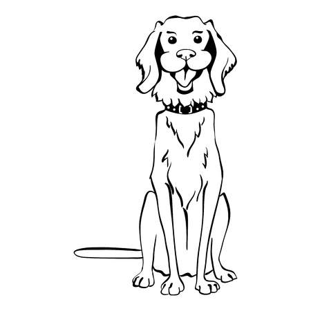 golden retriever: Sketch Funny dog Golden Retriever breed sitting breed hand drawing vector