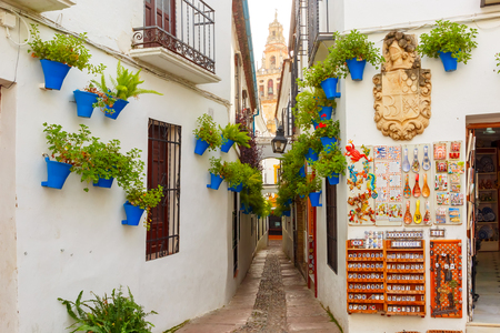 Flowers in flowerpot on the white walls on famous Flower street Calleja de las Flores in old Jewish quarter of Cordoba and Bell Tower Mezquita, Andalusia, Spain