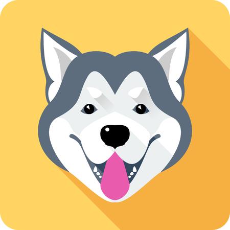 Vector dog Alaskan Malamute head breed icon flat design
