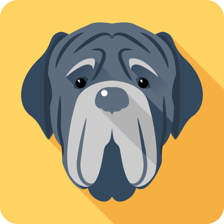 Vector serious dog Neapolitan Mastiff or Mastino icon head flat design Illustration