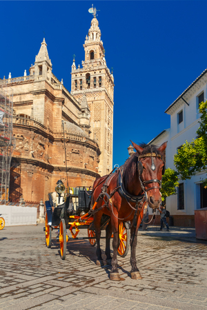 horse and carriage: Horse carriage waiting for tourists near Giralda, bell tower of the Seville Cathedral, in the sunny summer day, Seville, Andalusia, Spain. Stock Photo