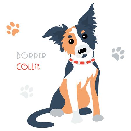 tricoloured: Cute funny tricoloured dog Border Collie breed vector