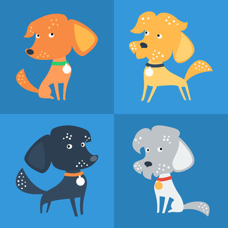 dog: Vector Set of cartoon cute funny Mongrel or Mixed breed dog in flat style