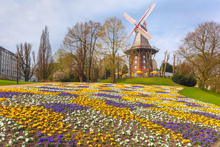 am: Popular city park Wallanlagen with Am Wall Windmill and colorful flowers foreground in Bremen, Germany