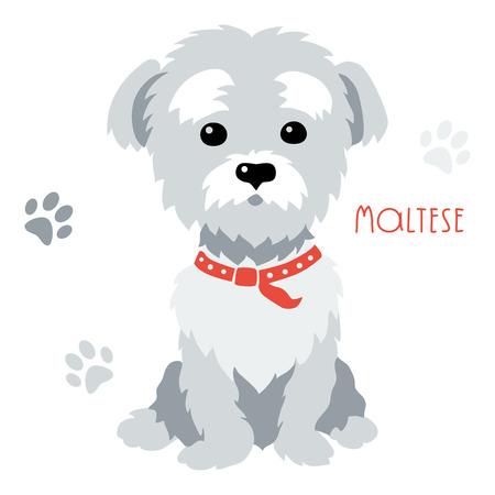 Sketch Funny dog ??maltés raza sentada mano dibujo vectorial