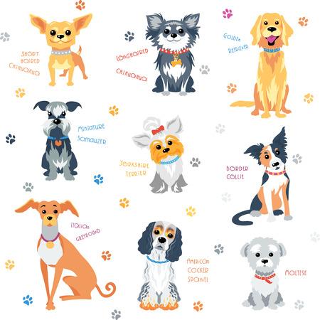 Vector set kleur honden van verschillende rassen.