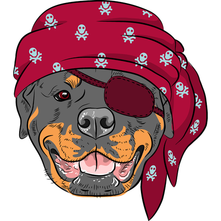 Vector Dog Rottweiler Pirate, wearing red bandana and eye patch