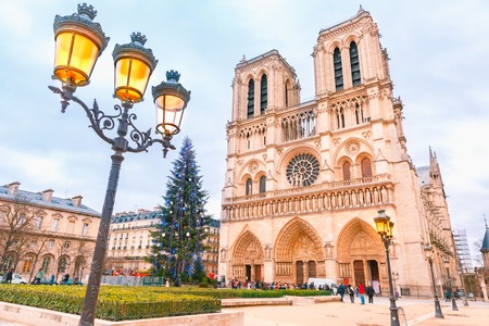 The Christmas tree in front of main west facade of Cathedral of Notre Dame de Paris, France
