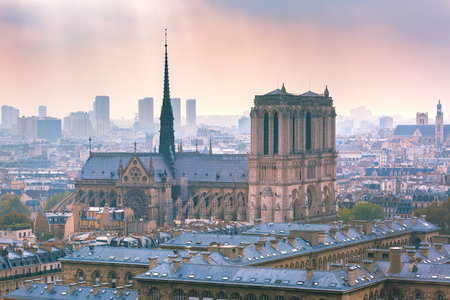 View of Paris with Cathedral of Notre Dame on a cloudy day, France