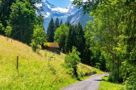Villaggio di montagna Wengen, Svizzera