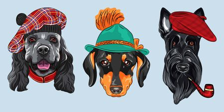 Set of hipster dogs. American Cocker Spaniel in tartan Scottish Tam, Dachshund in tyrolean hat, Scottish Terrier in red beret with a pipe Illustration