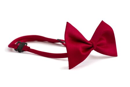 Red bow tie isolated on  white  photo