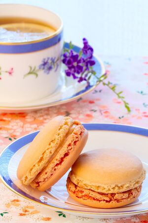 Afternoon high tea cupcakes and macaroons.