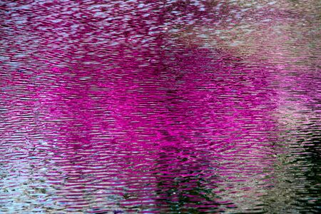 Abstract reflection of cherry blossoms and rhododendron in the river.