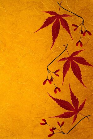 Maple leaves border the textured background.