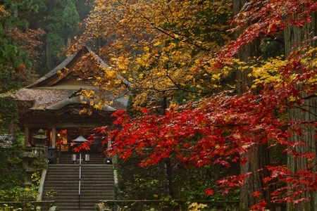 Buddhist Temple in the fall. Stock Photo
